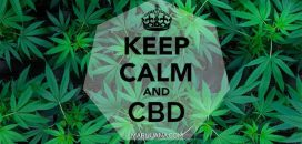 KEEP-CALM-CBD-1-702x336